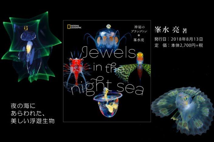 Ryo Minemizu - Jewels in the night sea - Photobook ID: RM-photobook-JNS